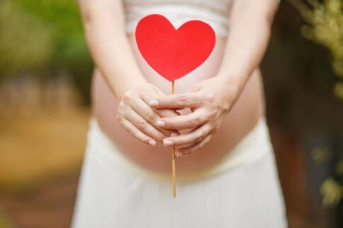孕前投保备孕险怎么买?