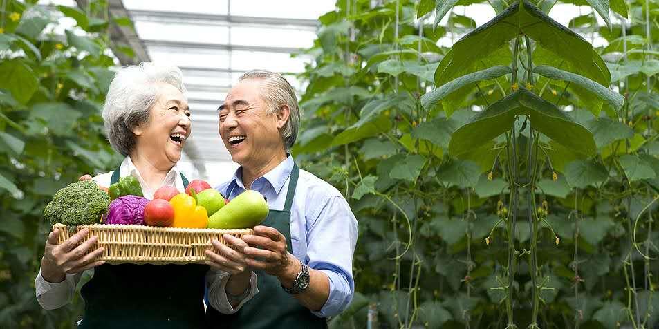 年金保险值得买,还有增值服务申请光大安心养老计划