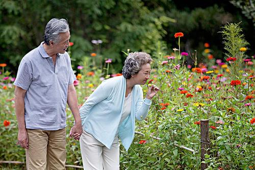商业养老年金保险哪家公司的好?